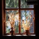 Něco pro aranžérky domácích dekorací