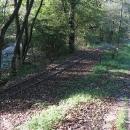 Přidaly se k nám koleje úzkorozchodné železnice, která v létě vozí turisty z nedalekých Kemenců do lesů pohoří Börzsöny.