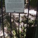 Hradní studna Vranova