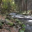 V těchto místech se proud Konopišťského potoka opřel o prudký svah