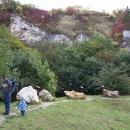 Malá výstava kamenů v bývalém lomu je víc než zajímavá
