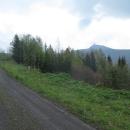 Mírně stoupáme lesní cestou na Výpřež