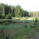 Tak kdybyste někdy potřebovali nocleh poblíž Bezdězu, Fleslovo jezírko je romantické místo uprostřed lesů