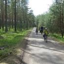 Borové lesy kolem Bezdězu vypadají idylicky.
