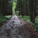 Zpočátku stoupáme po bývalé silnici dlážděné kameny