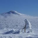 V dáli se tyčí Sněžka