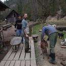 Pracovníci s kozenkami na mlýnském náhonu