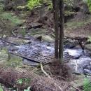 Dřevěné vyztužení dna potoka - památka na plavení vorů!