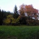 Tam pod těmi stromy stály Janovy hutě