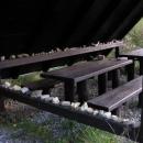 Někdo tu asi hledal pozůstatky po hutích a pak tu vystavil kameny se zbytky skla