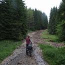 U bývalé Terčiny huti máme díky dřevařům i trochu blátivý terén