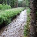 Tak tahle strouha Kabelského potoka nás po nočním dešti vyplavila