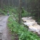 Podél Pohořského potoka míříme zpět do Pohoří