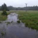 Rozvodněné Pohořské rašeliniště