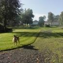 Horní část zámku se zahradou je za plotem a hlídaná psem.