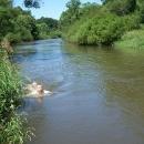 Luděk skočil do vody a rázem byl o pár metrů jinde.