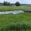 Krajina národního parku Nationalpark Unteres Odertal