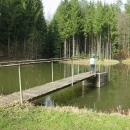 Objevili jsme v lese bezejmenný rybníček
