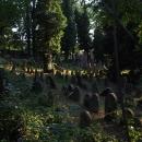 Nahlížíme do humpoleckého židovského hřbitova