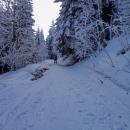 Vracíme se po polské straně kopce a tam už to bylo na hraně. Potoky nezamrzly a sníh je nepřikryl...