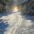 Pokus vyfotit takové to jemné zimní zlatavé poletování zmrzlých částeček vzduchu...