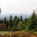Lesy před Sedloňovem