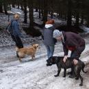 Cestou do Pece se ujímáme úkolu stáhnout zaběhnuté psy ze sousedství