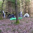 Nocleh v lese nedaleko Zvíkova