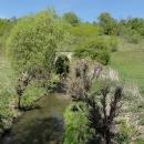 Dálniční propustek většího potoka je skrytý v křoví, objevujeme jej díky geocachingu