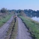 Mezi Tovačovskými rybníky zkouší Víťa i lehčí terén