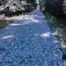 Povrch cyklotrasy za Strážnicí - ty kameny byly tak velké, že se po nich skoro nedalo jet