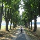 Ráno nás stezka zavedla do nádherné javorové aleje u zámku Mostov.