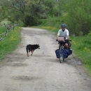 Z Balkánu mám ze psů respekt, ale tady to jsou zničené trosky