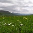 Kam až oko dohlédne se zvedají hřebeny hor divoké Podkarpatské Rusi