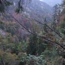 Pohled do Sokolí doliny