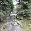 Cesta k Míchově skále