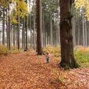 Podzim na vysočině a Víťa