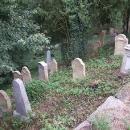 Hned pod hradem se zcela náhodně objevuje schovaný židovský hřbitov