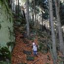 Pořád nahoru a dolů, po klouzavým listí a přes kameny - za chvíli toho máme plné zuby