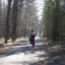 Klánovickým lesem