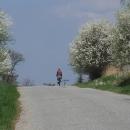 Všude kolem propuklo jaro