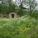 Z hradu se toho moc nedochovalo - pár sklepů, zdí a toto okno :-)
