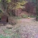 Cestou do Letohradu bylo nově objevené údolíčko v Jablonském lese