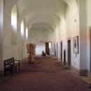 Vstup do kláštera v Plasech