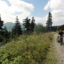 Cyklotrasa na Praděd z Červenohorského sedla je hodně kamenitá. Za Luďkem vlevo vykukují Dlouhé Stráně - horní nádrž