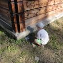 Víťa našel kešku u dřevěného kostela v obci Vidly