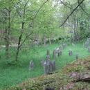 Staré náhrobky židovského hřbitova