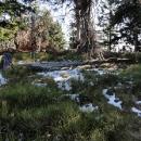 Zbytky sněhu po sněžení z minulého týdne