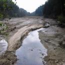 Zanesený rybník Nebákov