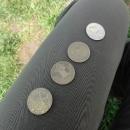 Zdejší měna Čtyřlístky a Dvojlístky
